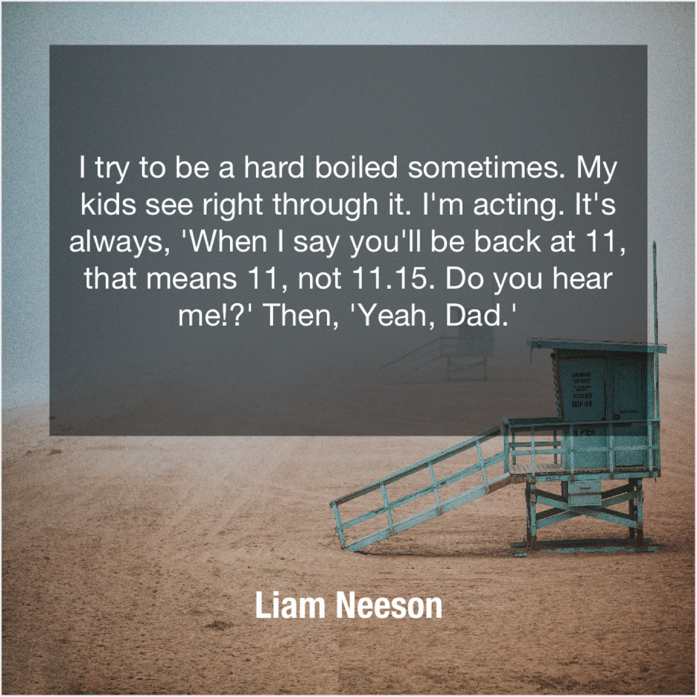Liam Neeson I Try To Be A Do You Love Quotes