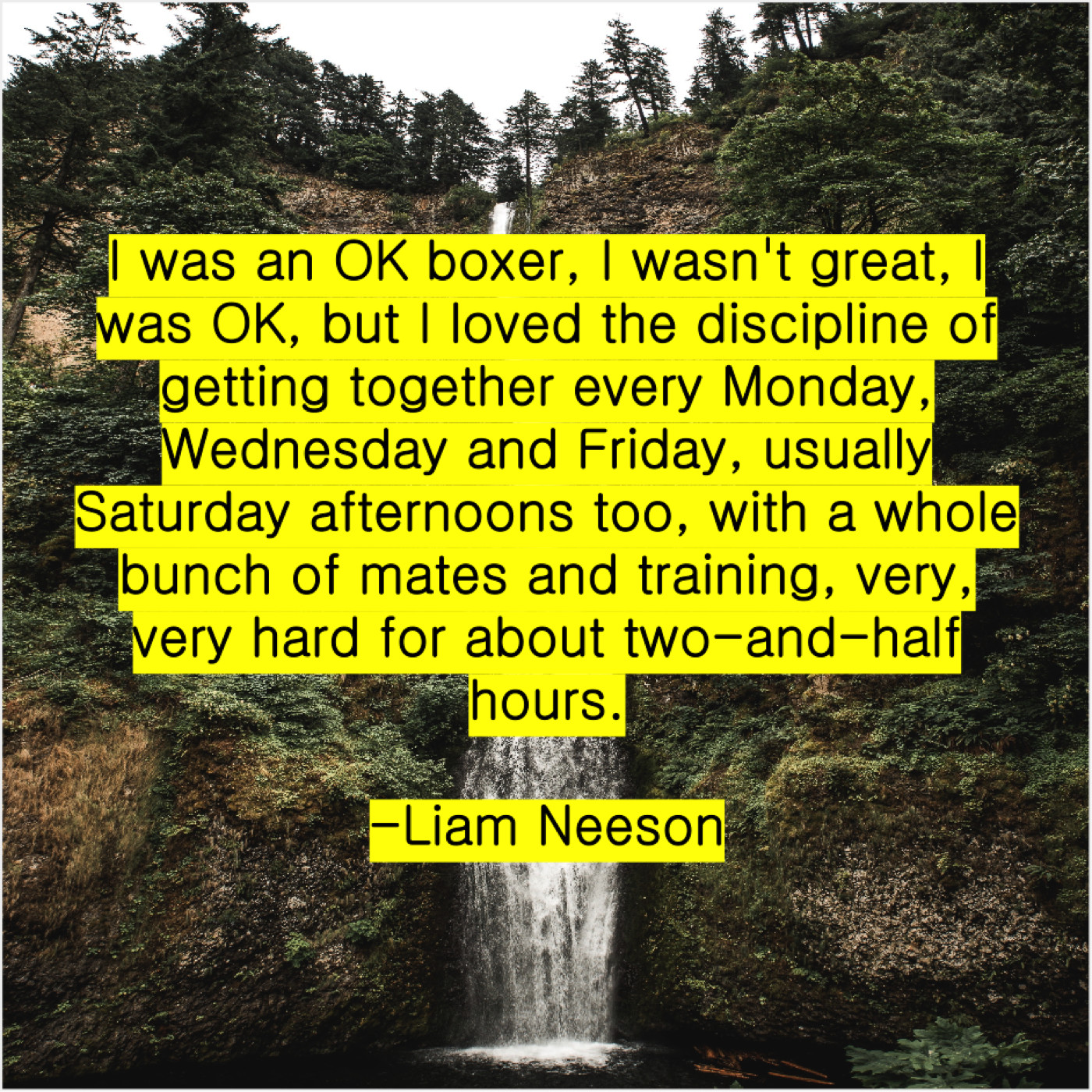 Liam Neeson I Was An Ok Boxer Do You Love Quotes