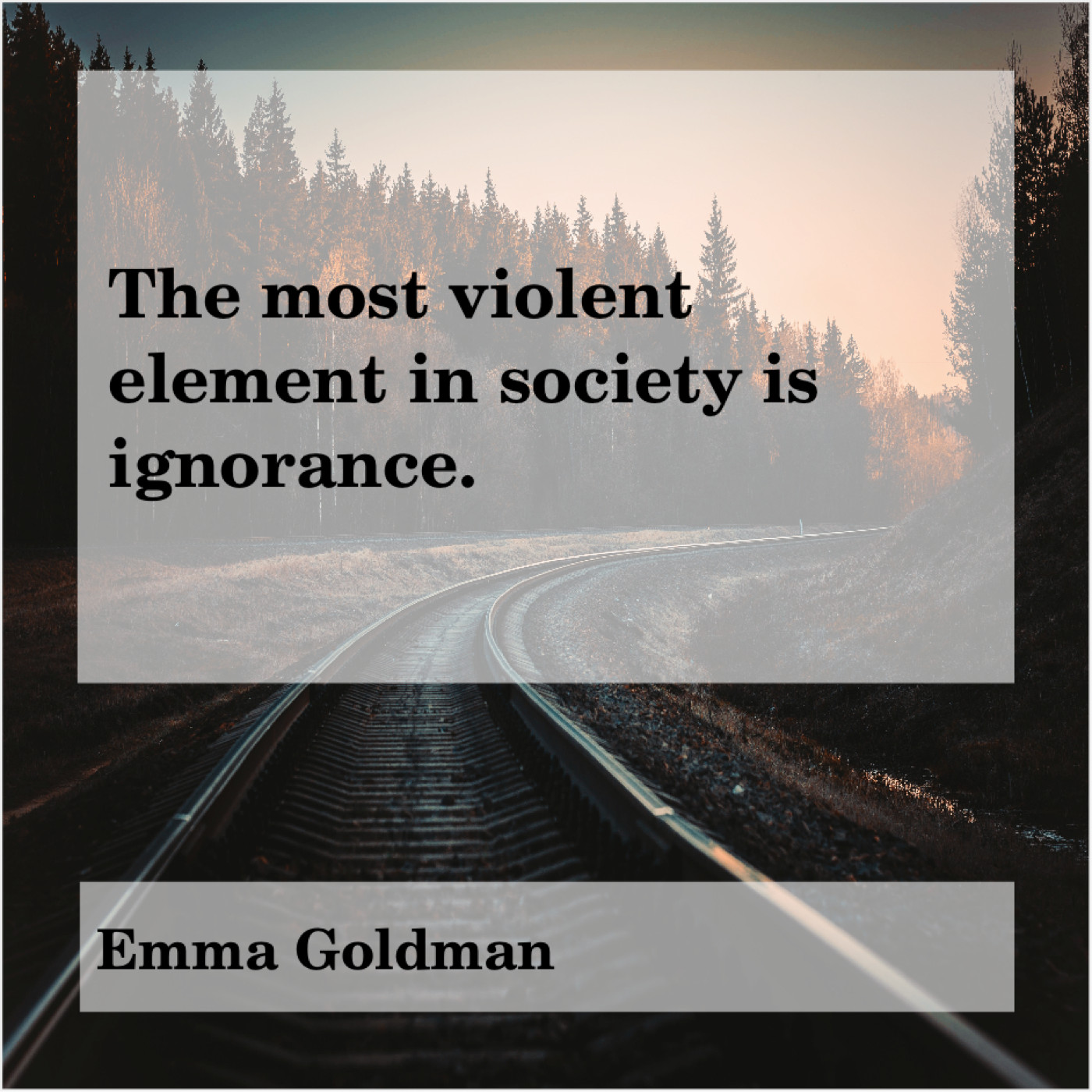 Original The Most Violent Element In Society Is Ignorance